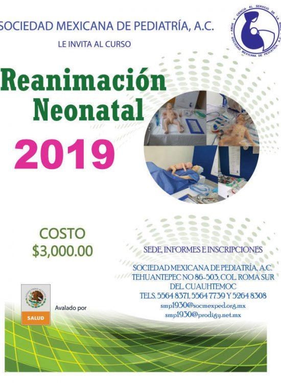 cartel-reanimacion-neonatal-reneo-2020-676x870