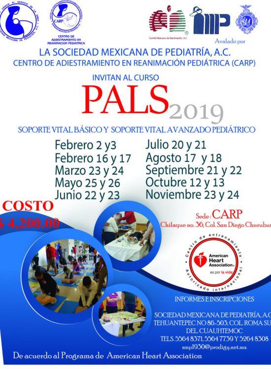 curso-PALS-fechas2019-924x1181
